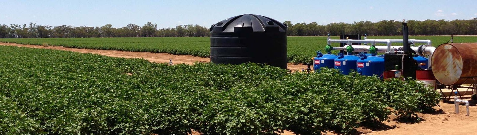 Drip Irrigation Services - Agriculture