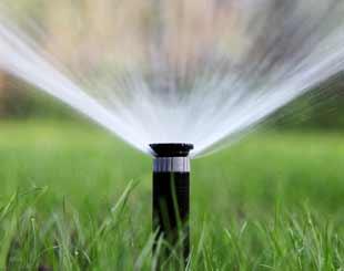 Irrigation Sprinklers and Valves