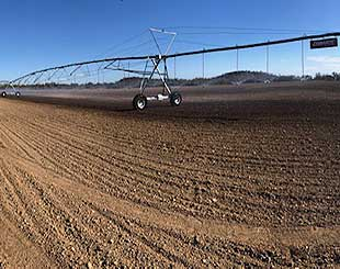 darling-irrigation-dasha-frankel-pivots-thumb